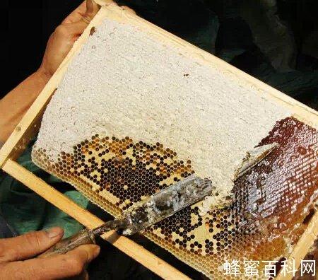买一瓶好蜂蜜,到底有多难?